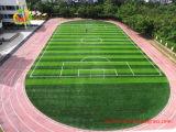 Аттестованная SGS синтетическая дерновина травы для футбольных полей и стадиона