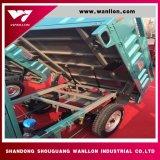 Mini camion di eliminazione dei rifiuti delle tre rotelle con la tettoia per la strada