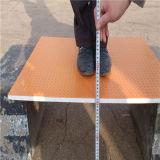 Feuille antidérapante de FRP pour la plate-forme de promenade de protection, paquet, échafaudage