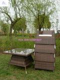 Jeu sectionnel en osier de meubles de jardin de sofa de patio de patio de Hz-Bt100 Rio de sofa extérieur réglé de rotin