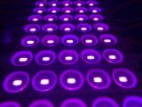 高品質5730 5LEDsによって注入されるLEDのモジュール