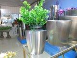 Bacs de fleur ronds de cuvette, bacs en métal de jardin, planteur d'acier inoxydable
