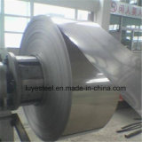 ASTM 304 Edelstahl Nr. 1 OberflächenSheet&Coil
