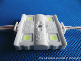 4 Chips Waterproof 5050 Injection Module LED pour Square