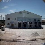 Costruzione prefabbricata del magazzino di conservazione frigorifera della struttura d'acciaio