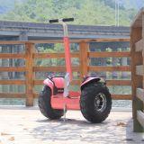 Scooter électrique de batterie au lithium avec l'affichage de distance de vitesse