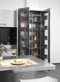 Armadio da cucina esterno dell'acciaio inossidabile di disegno moderno (BR-SS002)