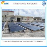Coletor térmico solar da tubulação de cobre