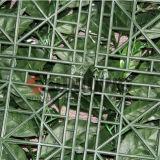 Le plastique décoratif de jardin protège la haie artificielle de buis vert