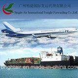 Fret maritime international d'expédition de la distribution LCL FCL de Guangzhou/Shenzhen à dans le monde entier et Paranagua Brésil
