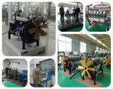 발전기를 위한 천연 가스 엔진 (HL6126CNG)