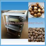 Máquina automática do biscoito da porca de macadâmia com capacidade elevada