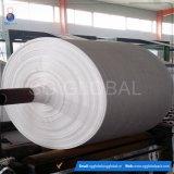 Tissu tissé par pp de matériau de polypropylène de la Chine pour le sac
