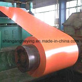 Bobina de acero cubierta color de Steel/PPGI con la garantía 15years