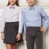 Chemises et jupes uniformes scolaires, Uniformes scolaires publics