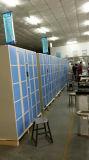 De nieuwe Fabelachtige Ontworpen Logistische Kast van de Levering van het Pakket met Systeem Icloud