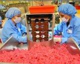 La coutume a imprimé le condom ultra mince 19, OEM de la prise une de sensibilité de peau de condom de fabrication