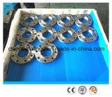 Bordes roscados forjados Ss316 del acero inoxidable del ANSI Ss304