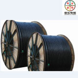 XLPE Cable Multicore Cable Wires (Leistungskabel)