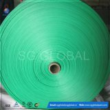 Tela tecida Polypropylene do verde da alta qualidade de China