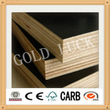 Goldluck Anti-Slip Film Faced Contraplacado / Wiremesh Contraplacado