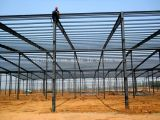 Высокое качество Professional Design Steel Structure Fabrication для Building
