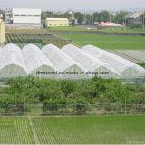 HDPE 정원 반대로 곤충 그물 농업 곤충 그물