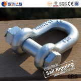 La goccia del acciaio al carbonio ha forgiato l'anello di trazione Chain del bullone