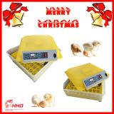 Matériel complètement automatique de ferme avicole pour hacher 48 oeufs