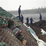 PP Geobag для предохранения от запруды озера