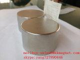 mètre magnet50X30mm d'arrêt d'aimant de l'eau d'arrêt d'aimant de néodyme