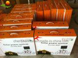 Telefono mobile portatile che incarica 2 kit solari chiari del comitato solare 9W