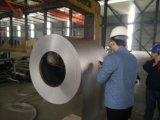 Heißer eingetauchter Galvalume-Stahlring (GL) (0.14--1.2mm)