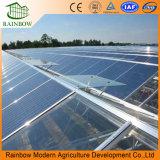 環境の光起電パネルの温室