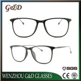 Het nieuwe Optische Frame van het Oogglas Ultem Plastic Eyewear met Slank Roestvrij staal 7311