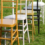 Gold Wedding Resin Tiffany Chair mit Cushion
