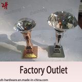Крюки кота вешалки одежд двойника конструкции сплава цинка красивейшие (ZH-2075)