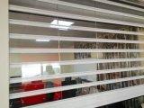 Entrate principali trasparenti del negozio del policarbonato