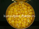 Sweet enlatado Corn com Highquality
