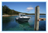 Горячая рыбацкая лодка сбывания 22FT Австралия стандартная All-Welded алюминиевая
