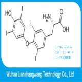 Levothyroxine weißes Puder CAS: 51-48-9 T4, zum von Hypothyreose zu behandeln
