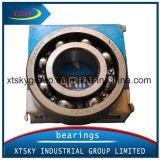 Cuscinetto a sfere profondo della scanalatura (6011 ZZ /2RS) con la marca (SKF KOYO NSK TNT, ecc)