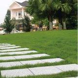 De Tegel van Decking van het Graniet van de Vloer van de Tuin van de Steen van de aard met PE Basis