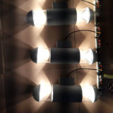 lâmpada de parede ao ar livre do diodo emissor de luz do diodo emissor de luz da ESPIGA dos lados 15W dois