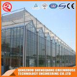 Serra di vetro di verdure del fiore della Multi-Portata della Cina