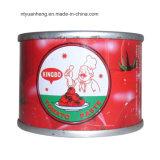 Molho com pasta de tomate 28 30 Brix