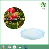Arbutin 98%, кожа забеливая выдержку толокнянки/выдержку листьев толокнянки/Alpha порошок Arbutin