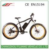 제조자 1000W 48V 뚱뚱한 타이어 산 전기 자전거