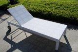 Салон фаэтона ротанга/стул салона/салон (SC-B8867)