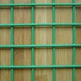 """Rete metallica saldata ricoperta PVC di X 1/2 """" di qualità 1/2 del rifornimento """" della fabbrica"""